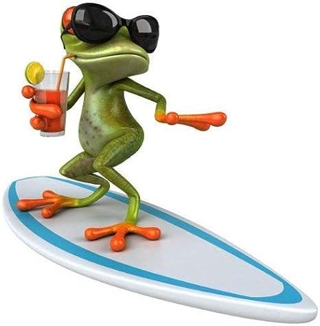 Younikat Sticker Surfer Frosch I 15 X 15 Cm I Für Laptop Koffer Roller Motorrad Badezimmer Duschwand Als Auto Aufkleber I Lustig Cool Wetterfest I Kfz 377 Auto
