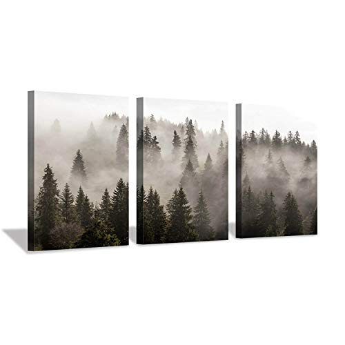 (Hardy Gallery Foggy Forest Picture Wall Art: Landscape Painting Misty Pine Trees Artwork Print on Canvas for Kids Rooms(16
