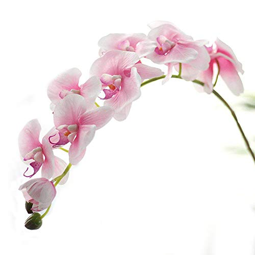(Miracliy 1 Piece Artificial Butterfly Orchid Flower Artificial Flower Plant for Home Decoration, Light Pink)