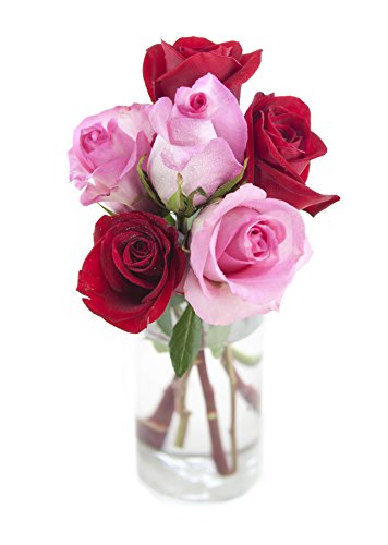 Bouquet of Long Stemmed Red and Pink Roses (Half Dozen)