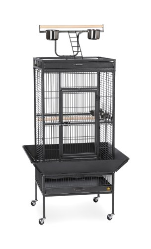 Prevue Hendryx 3152BLK Pet Products Wrought Iron Select Bird Cage, Black Hammertone by Prevue Hendryx
