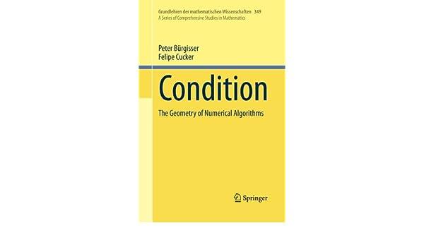 Condition: The Geometry of Numerical Algorithms (Grundlehren der mathematischen Wissenschaften)