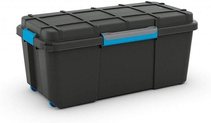 CURVER Caja Ordenacion Scuba Box, Negro y Azul, L: Amazon.es: Hogar