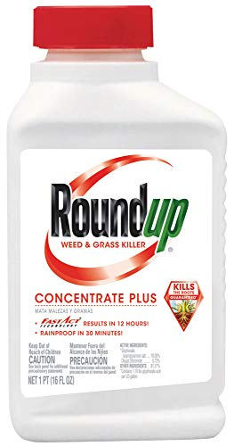 Roundup Weed and Grass Killer Concentrate