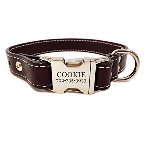 Rita Bean Heavy Duty Engraved Buckle Leather Dog Collar - Dark Chocolate (Buckle Dark Chocolate)