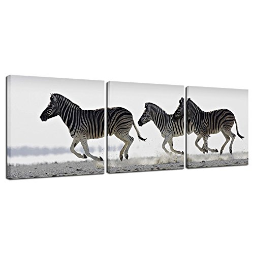 (Pyradecor Zebra Canvas Prints Wall Art Black and White Animals Pictures Paintings for Living Room Bedroom Bathroom Home Decorations 3 Piece Modern Stretched and Framed Giclee Horse Artwork)