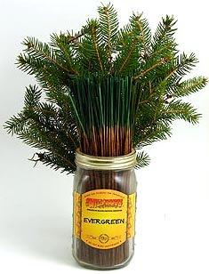 好評 Evergreen – Evergreen B001CE9Y64 100ワイルドベリーIncense – Sticks B001CE9Y64, 文具の富士商会:f84f027a --- egreensolutions.ca
