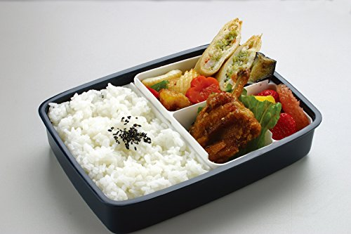 Skater Japanese Modern/Traditional Compartmental Bento Box ...