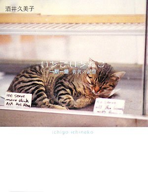 一期一猫 街角の記憶