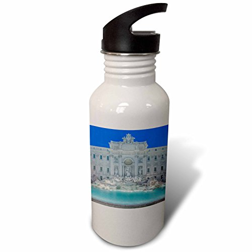 3dRose Danita Delimont - Fountains - Europe, Italy, Rome, Trevi Fountain at dawn - Flip Straw 21oz Water Bottle (wb_277641_2) by 3dRose