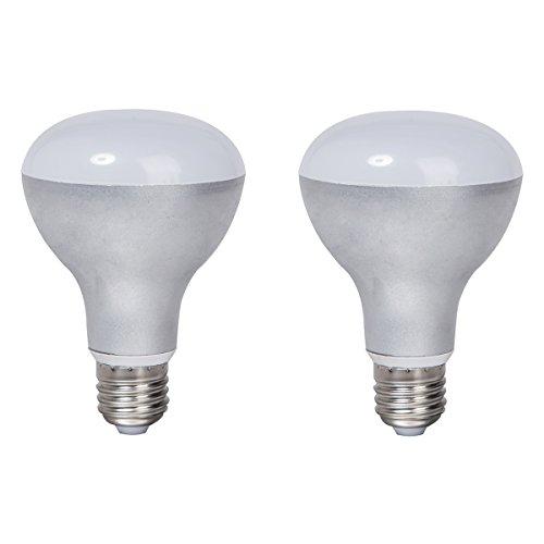 2-Pack Non-dimmable Silver Aluminum Housing LED R80 Light Bulbs E27 Base 9w (60w Equivalent) 180 Degree Beam Angel (Daylight 6000K)