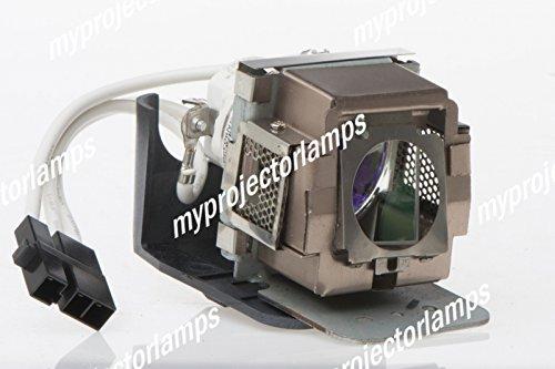 交換用プロジェクターランプ ベンキュー 5J.01201.001 B00PB4OC9A