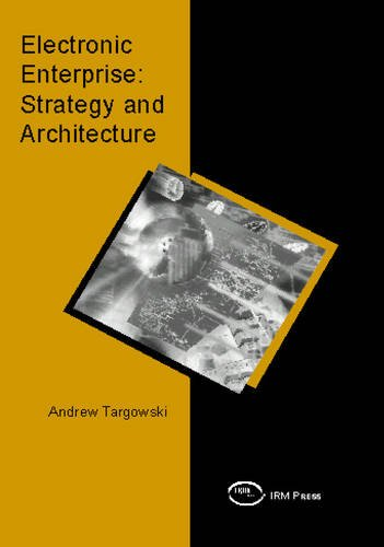 Electronic Enterprise: Strategy and Architecture
