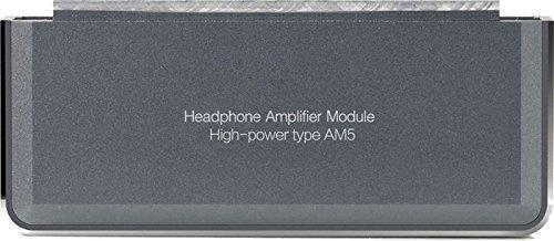 Fiio AM5 High Power Headphone Amplifier for X7 Music Player, Titanium,Grey