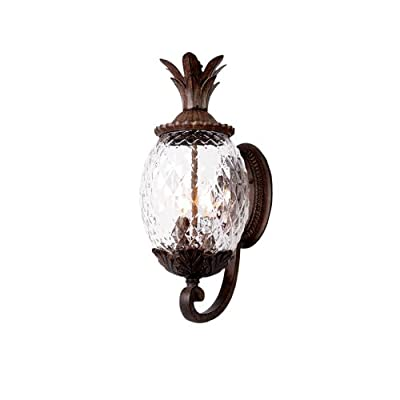 Acclaim 7511BC Lanai Collection 3-Light Wall Mount Outdoor Light Fixture, Black Coral - Three Light Outdoor Wall Mount from the Lanai collection Style: Leaf, Flower, Fruit Light Type: Exterior Wall Mount Finish: Black Coral - patio, outdoor-lights, outdoor-decor - 41sGzyehGZL. SS400  -