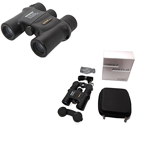 DiaStone 10x25 DCF WP 日本製双眼鏡コンパクトサイズ [並行輸入品] B01JOJNLXA
