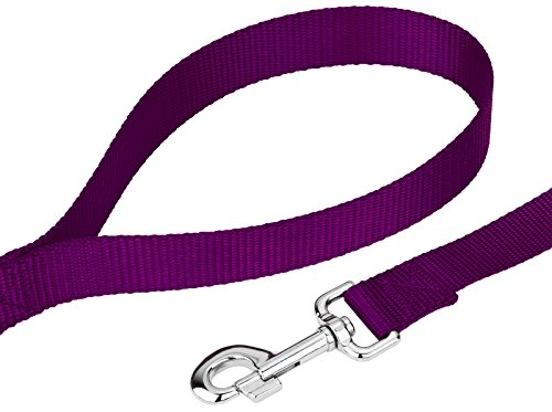 Image of Country Brook Petz | Vibrant 21 Color Selection | Nylon Dog Leash (Purple, 1 inch width, 4 Foot)