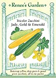 Squash - Zucchini - Tricolor Mix Seeds