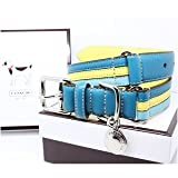 "COACH Striped Multicolor Leather Collar with Engraveable Charm 60407 Limited Edition - Turquoise/Yellow, Large (17""-21"")"