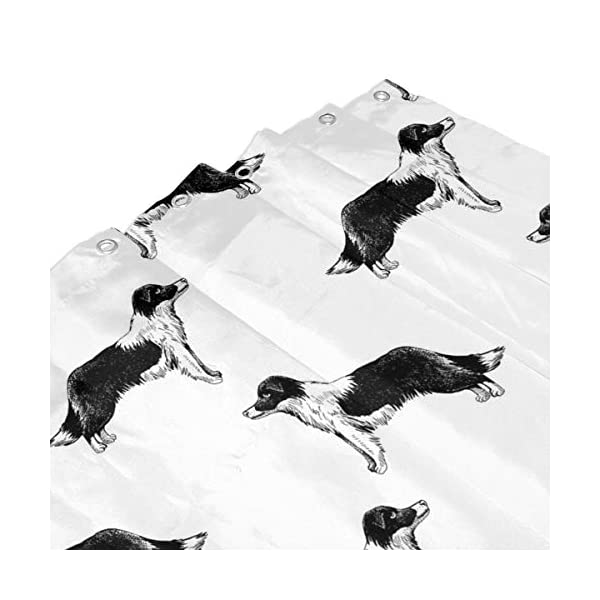 Border Collies Bathroom Shower Curtain Shower Printing Curtains Durable Polyester Bath Curtain Waterproof Bathroom Curtain with 7-12 Hooks 60x72 in 4