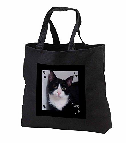 charlyn-woodruff-cw-designs-cat-photography-cute-cat-lovers-black-white-tux-cat-closeup-photo-tote-b