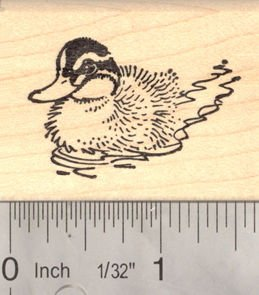 Duckling in Water Rubber Stamp, Duck Pond