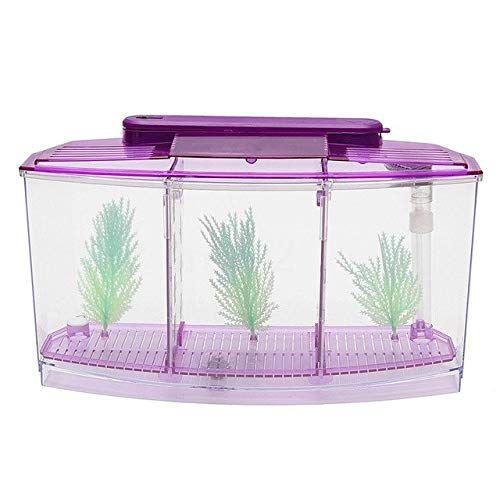Triple Cube 6 Led Light Betta Aquarium Separate Spawning Box Fish Tank   Purple, S