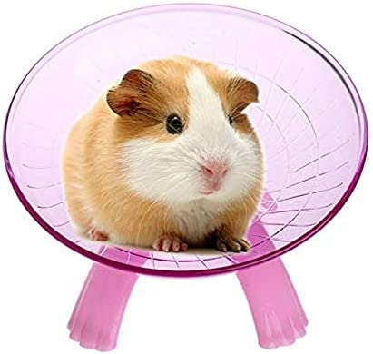 Uteruik Hamsters Small Animal Exercise Flying Saucer Sport Wheel Silent Spinner For Pet Syrian Rat Gerbils Mice Chinchilla Guinea Color Random 1pcs Amazon Co Uk Kitchen Home