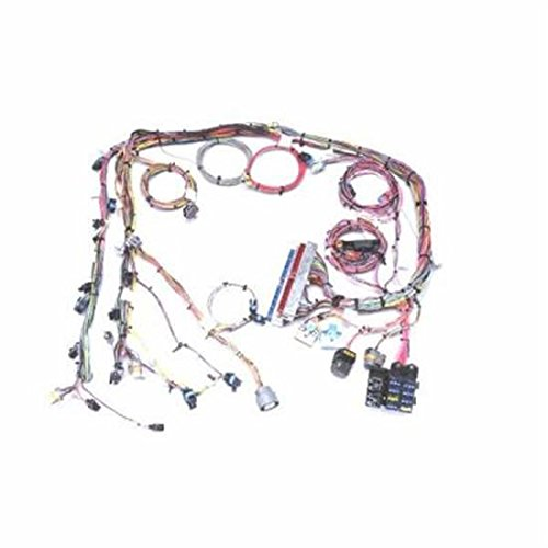 Painless 60218 Fuel Injection Wiring Harness, Extra Length (Fuel Painless Wiring Injection)