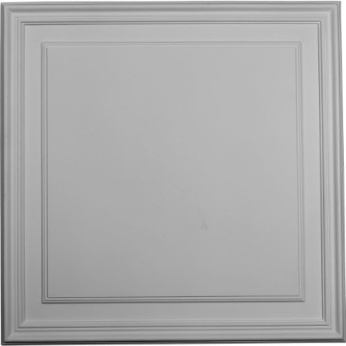 Ekena Millwork PNL22X22LE-CASE-12 21 5/8 inch W x 21 5/8 inch H x 5/8 inch P Legacy Rectangle Wall/Door Panel (12-Pack), by Ekena Millwork