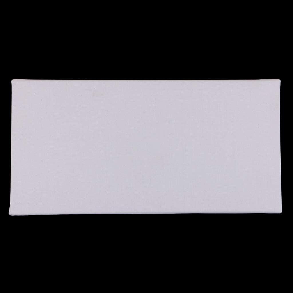 SM SunniMix Toiles sur Chassis Panneaux /à Peindre Id/éal pour Artistes D/ébutants 20x40cm Blanc