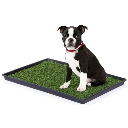 Domestic Pet Waste Disposal Large Tinkle Turf Reliable by PetsRFriends
