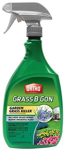 Ortho 0438580 Grass B Gon Garden Grass Killer Ready-to-Use, 24-Ounce (2) ()