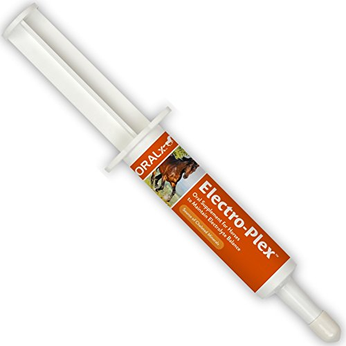 Oralx Electro-Plex Electrolyte Paste for Horses. Feed After Workouts, Events or in Hot Weather. Replenishes Electrolytes & Nutrients. Encourages Water Consumption. Easy-Dose Syringe. 1.2 - Electrolyte Paste