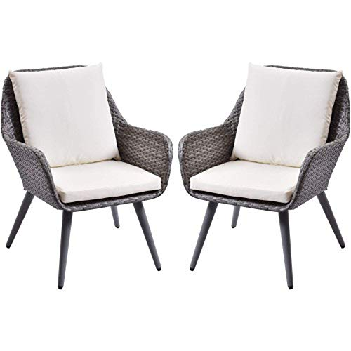 D-YUN Outdoor Wicker Dining Chairs PE Rattan Accent Chair with Beige Cushion Patio Garden Furniture Sets, Set of 2