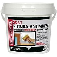 Peinture Anti-Moisissure 750 ml