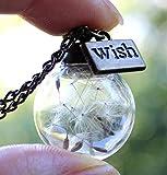 Handmade Real Dandelion Wish Necklace Make A Wish Real Dandelion Seed Pendant Necklace Dried...