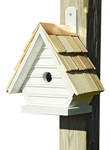 Heartwood 075D Chick Bird House Decorative by Heartwood