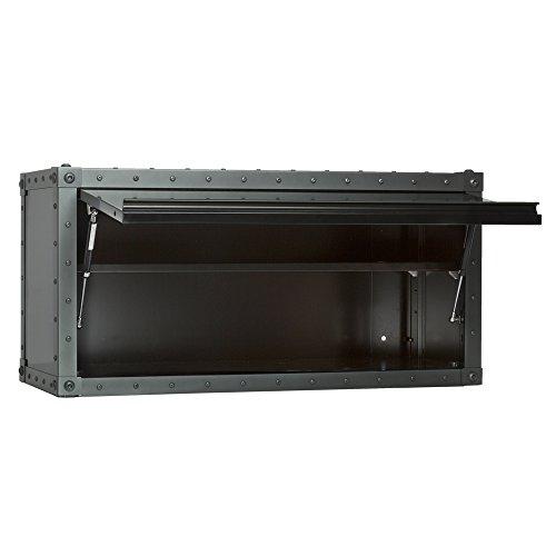 Viper Tool Storage VV36BLT Armor 36-Inch Wall Cabinet (Storage Viper Tool Cabinet)