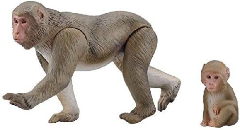 Takara Tomy Ania Animal Tigre Sabre AL-10 Com Figura Homem Neandertais f//s