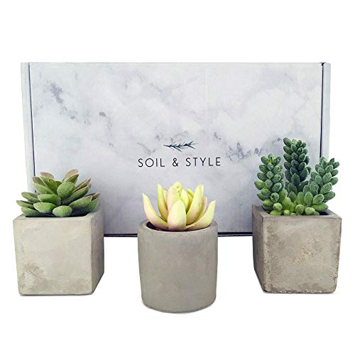 Soil & Style 3 Fake Succulent Plants in Pot - Artificial Plants - No Green Thumb Required - Faux Succulents Potted - Handcrafted Cement Pots - Miniature Fake Plants for Decoration - Fake Cactus
