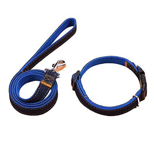 AMDXD Dog Collars with Leash Blue Gold Chinlon Collars Leashes Set for Dog 2 Pieces Set ()