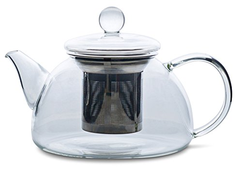 Redbird Glass Teapot or Kettle - Stainless Steel Tea Infuser Filter Basket - Microwave and Stovetop Safe Tea Pot 600 mL/20 oz