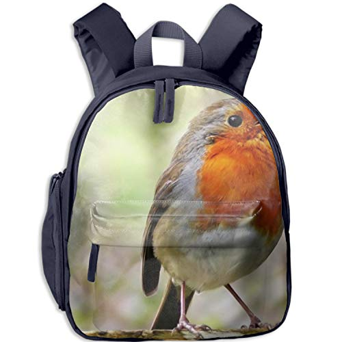 Quality Clear Backpacks in Blue Pink Black Heavy Duty Robin Birds Adjustable Padded Straps Work, School, College, Kids -