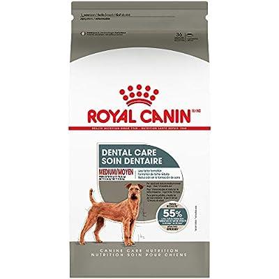 Royal Canin Dental Care Dry Food for Medium Dogs