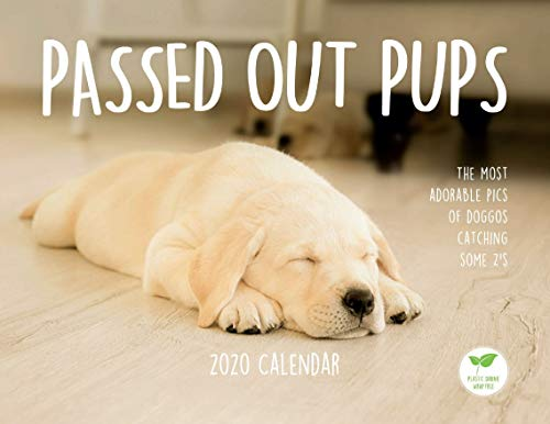 Passed Out Pups 2020 Cute Dog Calendar