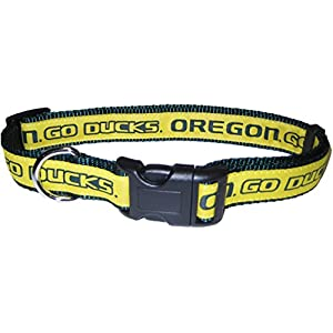 COLLEGE OREGON DUCKS Dog Collar, Large