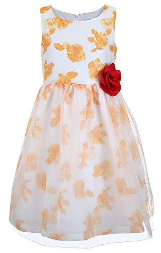 Emma Riley Girls' Sleeveless Printed Floral Tulle Princess Party Dress with Rosette (Girls Dresses Size 6)