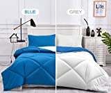 Alternative Comforter - Down Alternative Reversible Comforter Set Queen Size, All-Season Blue/Grey Quilted Comforter,Duvet Insert or Stand-Alone 3 Piece Lightweight Bedding Queen Comforter Set Stitched Diamond Pattern