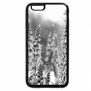 iPhone 6S Case, iPhone 6 Case (Black & White) - PURPLE SALVIA'S